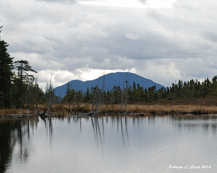 Vose Spur and Mt. Carrigain can be seen past the southern end of the pond