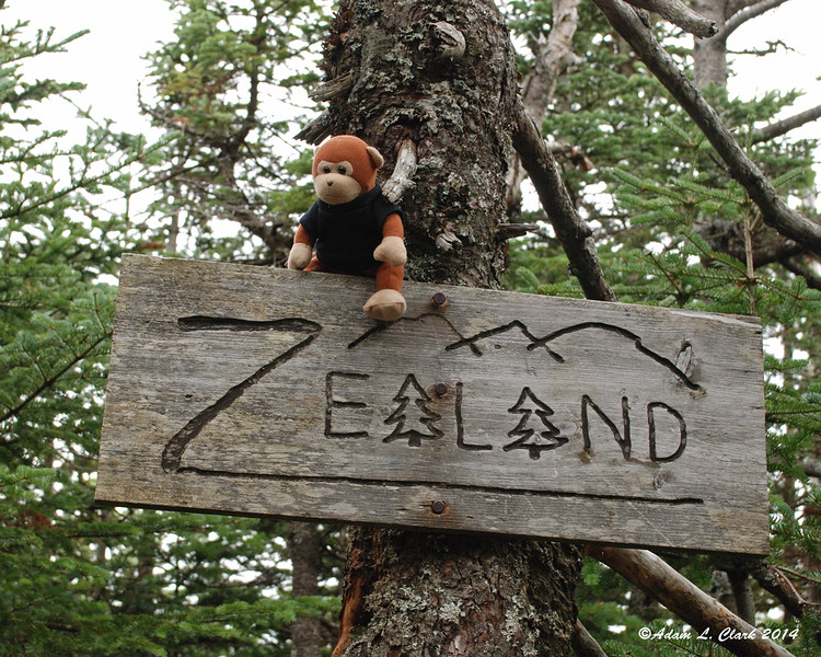 Miles climbed up onto the summit sign for today's picture