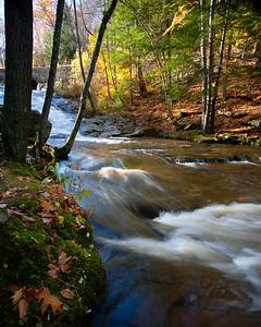 Autumn River (7868-7869)