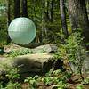 Globe at Coastal Maine Botanical Gardens