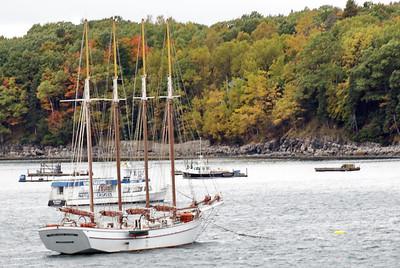 Four master sailing ship in Bar Harbor
