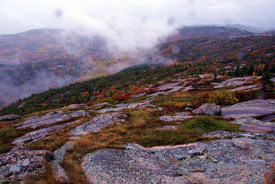 Top of the mountain in Acadia NP
