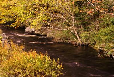 Fall stream, on the way to Peggy's Cove, Nova Scotia