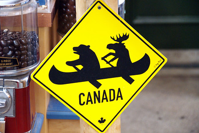 Bear and Moose Sign