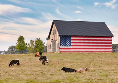 North Hampton Flag Barn_6738
