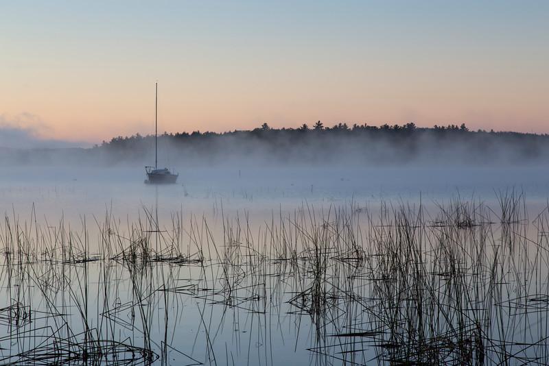 Foggy Sunrise_2418