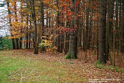 New England - November 5-7 2017