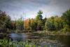 Fall Pond - NH  _DSC7357