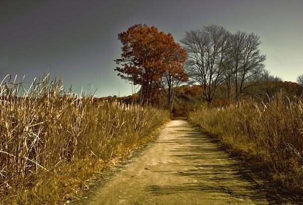 Walk Through the Refuge