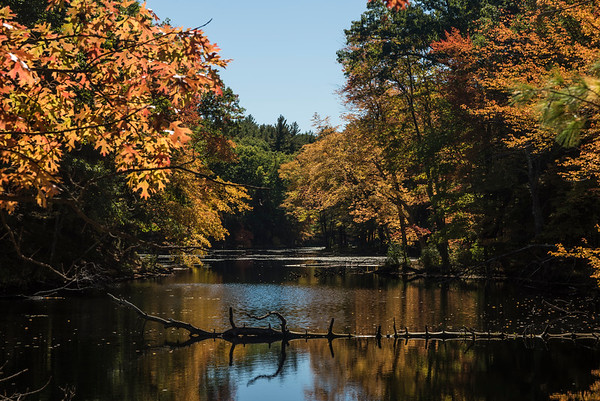 Fall - Locust Pond