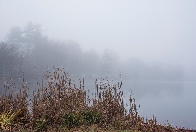 Foggy Morn at Heart Pond