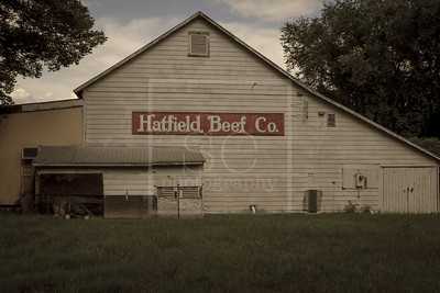 Hatfield Beef Co.