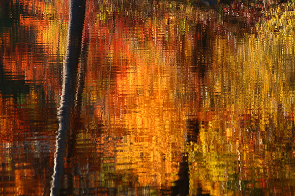 Fall reflections, Dug Pond, Natick, MA