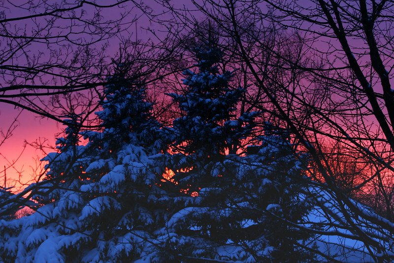 We had about 12 inches of snow today- so I was walking around the neighborhood and came upon this beautiful sunset