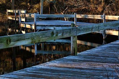 Boardwalk at Broadmoor Wildlife Sanctuary, Natick, Ma