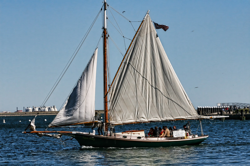 Sailing in Boston Harbor on the Tupelo Honey