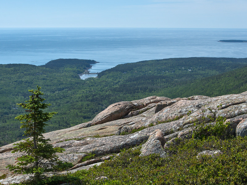 Mt Cadillac, view to Otter Cove