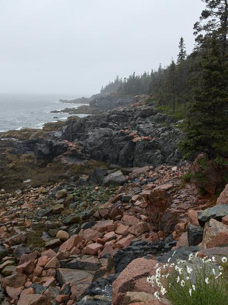 Near Otter Point