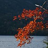 Fall at Jordan Pond