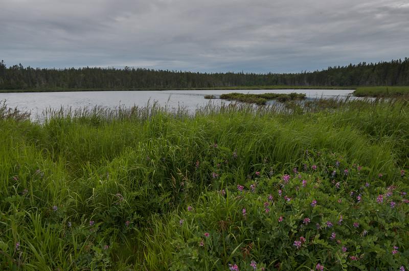 Seawall Pond