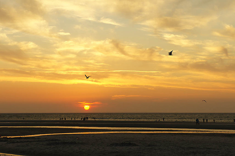 Sunset w/Gulls - Mayflower Beach, Dennis, MA