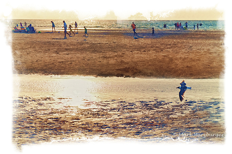Beach Races<br /> First image that I used Topaz, Nik Efex Color & HDR Pros, and OnOne Frames all on the same image