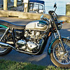 TriumphMC wShadows.jpg