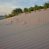 Dunes & shadows - Mayflower Beach