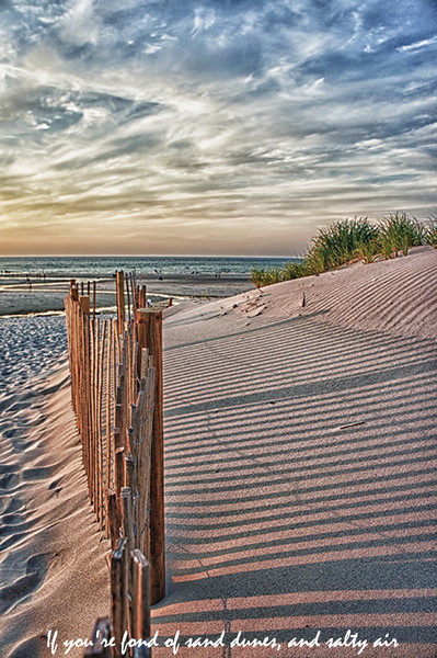 If you're fond of sand dunes and salty air...<br /> Mayflower Beach, Dennis, MA