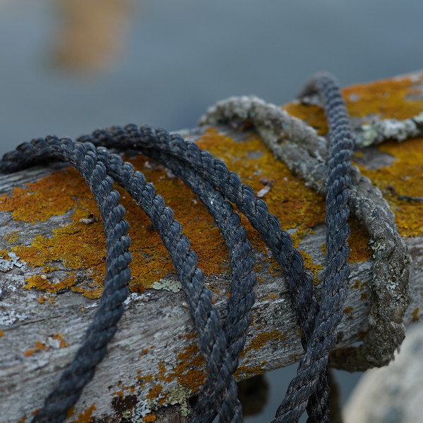 Rope and Rail