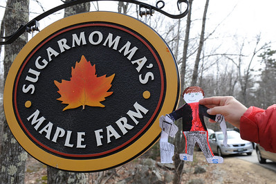Stan is lucky! It's Maple Sugar Weekend in New Hampshire! Here he has arrived at Sugarmomma's Maple Farm. Stan is going to learn how maple syrup is made.