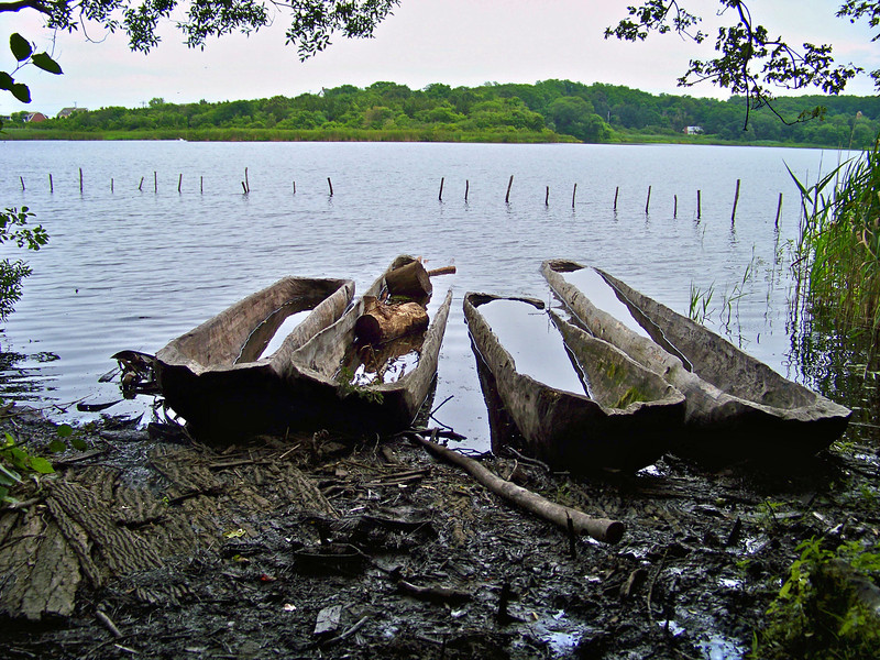 Mishoons (traditional Native American canoes) on the Plymouth Village harbor shore.