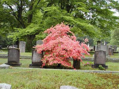 Colonial Cemetery, Amesbury MA