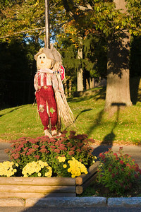 Scarecrow Decorates a Rural Road in Autumn, West Newbury MA