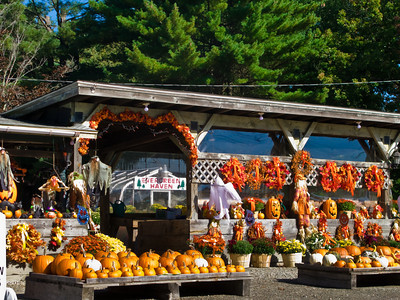 New England Farm Stand in Autumn, Hopkinton, Massachusetts