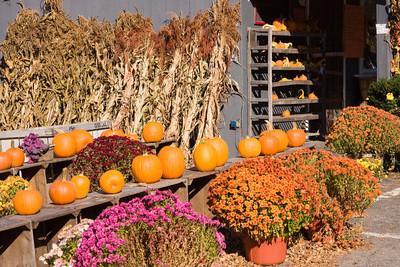 Autumn Harvest at a New England Farm Stand