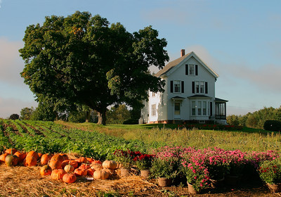 New England Farmhouse in Autumn, West Newbury MA