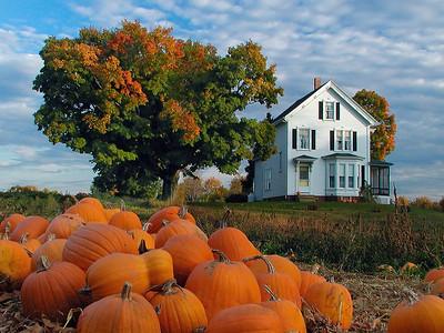 New England Farmhouse in Autumn