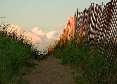 Path to the Beach, Plum Island, Massachusetts