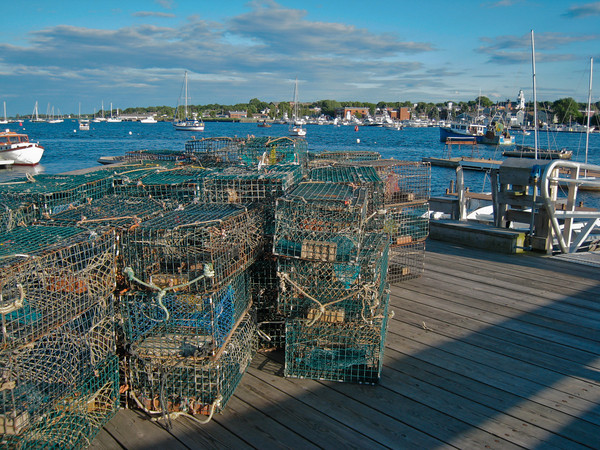 Lobster Traps Stored on the Salisbury Town Dock