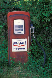 Mobil gas pump growing in woods