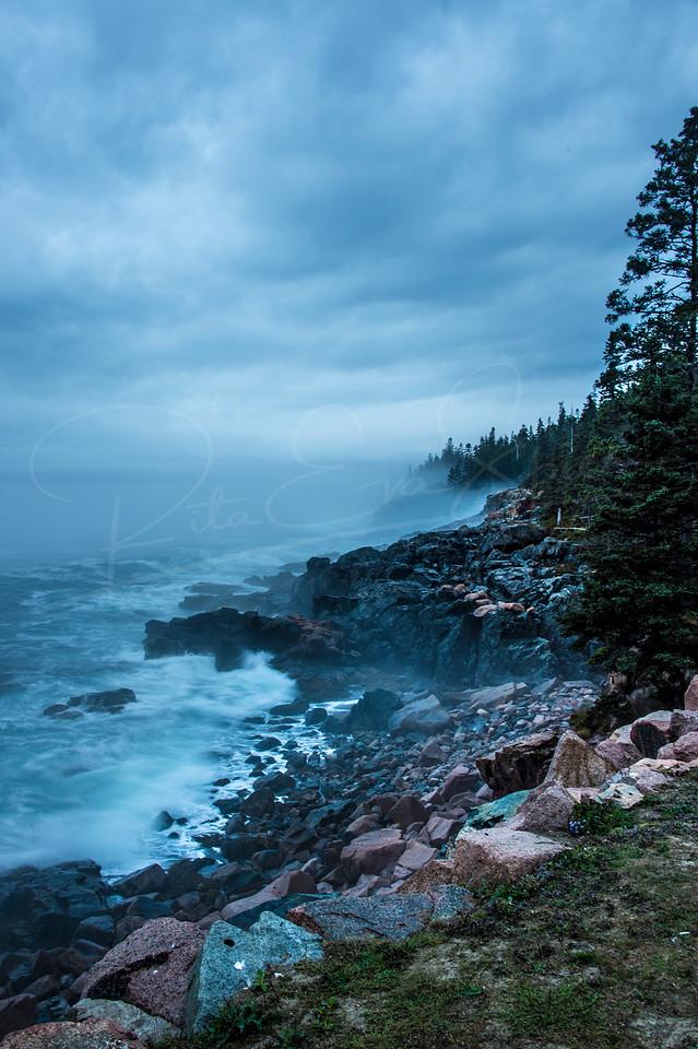 Engulfing Fog