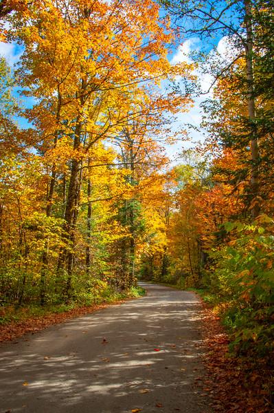 Bright Colored Road