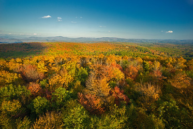 autum leaves from Mt Gile fire tower