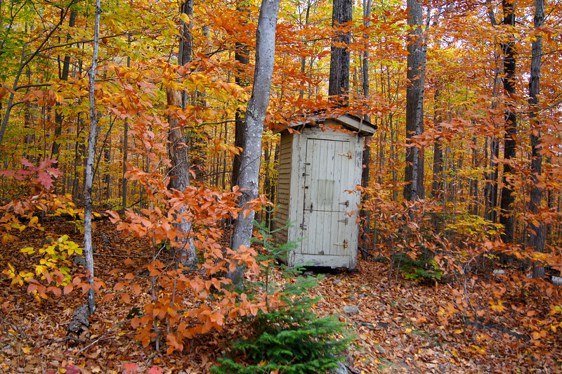 A tiny service shack surrounded by autumn foliage; White Mountains, New Hampshire.