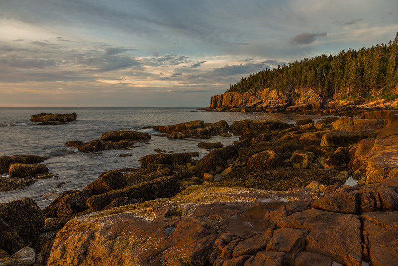 ME-ACADIA NATIONAL PARK-OTTER CLIFF