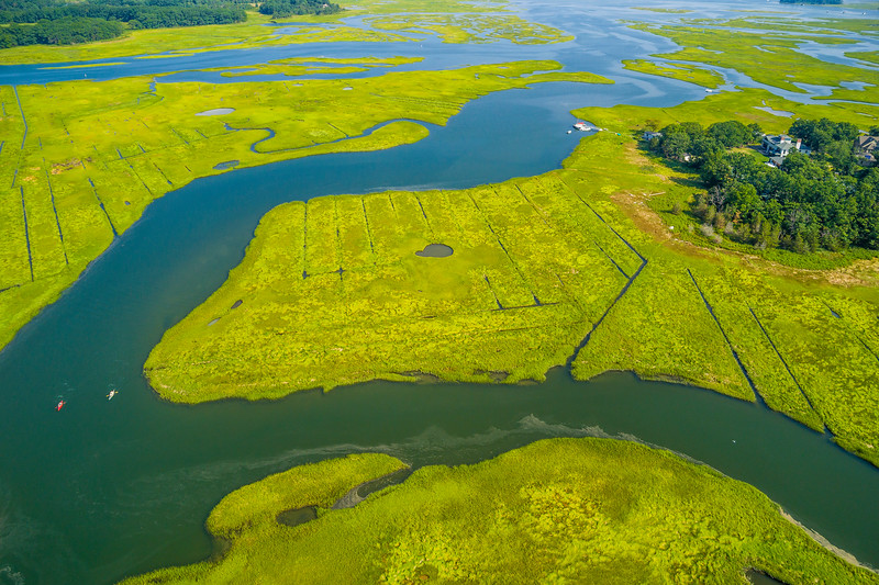 Massachusetts-Essex-Great Salt Marsh