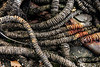 MAINE-NEW HARBOR-BACK COVE-Rusted rope