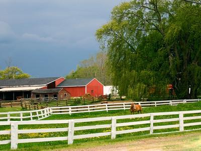 Low Street horse farm
