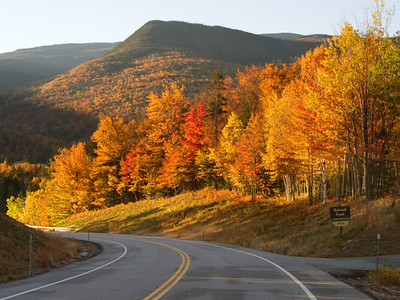 Fall Foliage On The Side of a Mountain Road